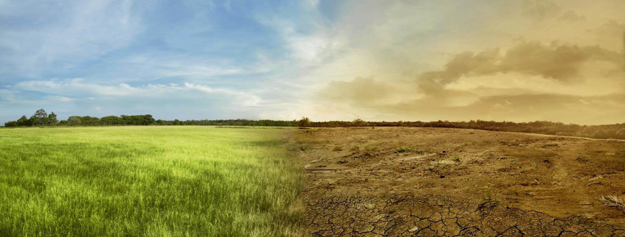 We face a significant climate change